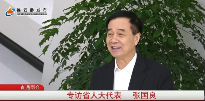 专访江苏省人大代表张国良